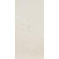 Fioranese I Cocci Calce 60x120 Rett.Gat.1