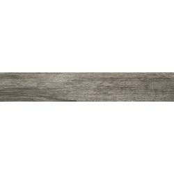 Ariana Larix Tortora 13.5x80 Rett.Gat.1