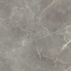 Gres Fioranese Marmorea Grigio Imperiale 74x74 Lev.Rett.Gat.1