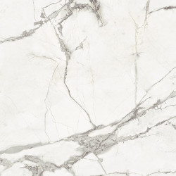 Fioranese Marmorea Intensa Bianco Luce 74x74 Mat. Rett. Gat.1